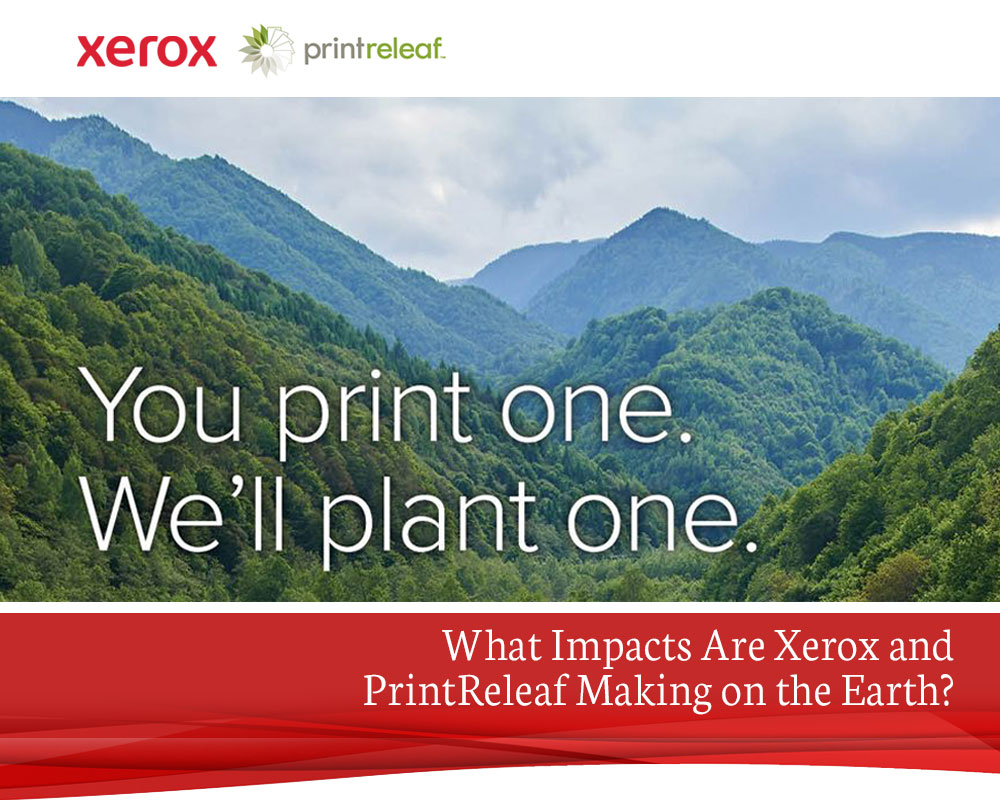 What-Impacts-Are-Xerox-and-PrintReleaf-Making-on-the-Earth